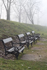 Benches (kattheraccoon) Tags: art photography canon canoneos1300d eos 1300d camera adaciganlija belgrade serbia nature park path trees bench benches fog winter leaves grass