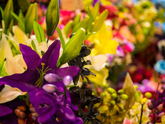 "Silk Flowers <a style=""margin-left:10px; font-size:0.8em;"" href=""http://www.flickr.com/photos/123408179@N07/39418796005/"" target=""_blank"">@flickr</a>"