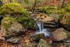 Cascades au Blavet (photos-nat) Tags: cascades pose longue longexposure eau foret water