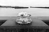 Bollard (Number Johnny 5) Tags: tamron quay 2470mm old port noir dof crusty river bollard pier rusty black d750 wall nikon harbour white