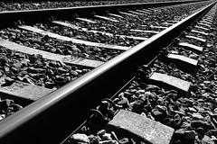 Olvidar a una mujer inteligente cuesta un número incalculable de mujeres estúpidas. (elena m.d.) Tags: ferrocarril vias tren guadalajara elena monocromo texturas