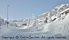 heavy snow  (43) (cattazen.com) Tags: champlasseguin sestriere
