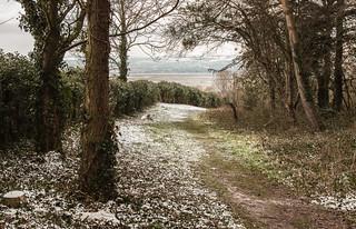 Frozen Paths