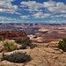 Foreground and Background (Canyonlands National Park)