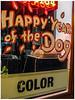 Happy Year of the Dog (prima seadiva) Tags: dog hairsalon sign year yearofthedog