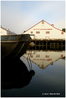 Muted Colours - Steveston XP7470e