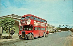 Ex London transport RTL866  (LLU856)  1968 Grand Bahama. (Ledlon89) Tags: london bus buses transport lt lte lptb londontransport londonbus londonbuses vintagebuses oldbuses aec