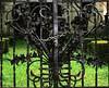The chain (Alfredo Liverani) Tags: 0492018 project365049 project365021818 project36518feb18 oneaday photoaday pictureaday project365 project project2018 2018pad canong5x canon g5x pointandshoot point shoot ps flickrdigital flickr digital camera cameras europa europe italia italy italien italie emiliaromagna romagna faenza faventia faience faenza2018 metallicobjects metallic metal oggettimetallici metallo metallico metallici cancello gate dof erba albero tree grass