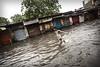 india, 2016. (semaone) Tags: india agra unusual unexpected street uttarpradesh monsoon mousson monsun मानसून भारत आगरा monzon indien inde