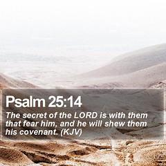 Daily Bible Verse - Psalm 25:14 (daily-bible-verse) Tags: omega journey dailydevotion inspirationallockscreen