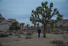 Desert_Road_Trip-4940 (smithjustind) Tags: arizona newyears2018 roadtrip robyn