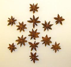 Star Anise  (Illicium verum) (simonpfotos) Tags: 7dwf crazytuesdaytheme spices steranijs