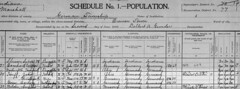 1900 John Huff census