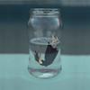 ahogandome en un vaso de agua (Kathy Chareun) Tags: theboxchallenge1 challenge reto agua water glass vaso autorretrato autoretrato selfportrait woman mujer femme girl chica 35mm ps photoshop lr lightroom art arte surreal surrealism surrealismo surrealistic surrealista body cuerpo dress vestido vidrio small borrowers borrower little pequeña pequeño hair pelo