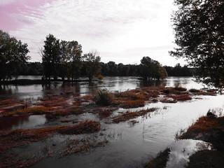 Juste la Loire !!!