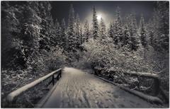 White night (PhotoArt Images (away)) Tags: jasper canada britishcolumbia photoartimages winter winterwonderland bridge moonlight moonshine hff snow