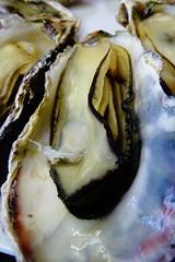 DSC00036 (muzina_shanghai) Tags: 牡蠣 蒸し牡蠣 oyster