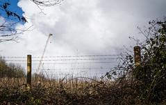 The crane (judy dean) Tags: brambles hedgerow winter crane judydean 2018 cotswolds stowonthewold sky fence
