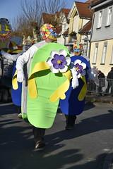 DSC8145 (Starcadet) Tags: dieburg dibborsch fastnacht dibojerfastnacht karneval prty brauchtum parade umzug fastnachtszug fastnachtdienstag fasching fasnet kostüme verkleiden südhessen cosplay spas humor clowns