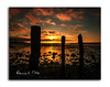 You've Been Framed (RonnieLMills) Tags: sunrise dawn early morning islandhill comber newtownards county down rotten wooden posts diving platform threesome