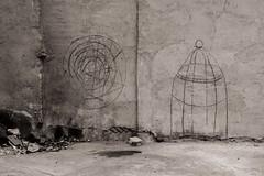 Hyroglyphs (Tom Levold (www.levold.de/photosphere)) Tags: fuji fujixpro2 isfahan xf18135mm esfahan sw bw abstract garage abstrakt