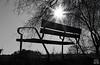 Backlighting (photoschete.blogspot.com) Tags: canon 70d eos 50mm banco bank parque park naturaleza nature sol sun contraluz backlighting blanconegro blaackwhite monocromo