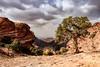 Wadi Musa, Outskirts of Petra, Jordan (Aethelweard) Tags: أمصيحون maangovernorate jordan jo petra wadimusa landscape countryside beautiful spectacular stunning scenery trees rocks outcrop sky rugged