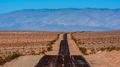 Death Valley National Park    California. Death Valley Road (Feridun F. Alkaya) Tags: deathvalley deathvalleynationalpark nps ngc california coyote usa nationalpark zabriskiepoint sanddunes jackal desert dvnp mesquiteflatdunes dunes nikon80200 saltflats salt