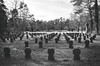 Deutscher Ehrenfriedhof Waldfriedhof Münster (German WWII War Cemetery) (SurfacePics) Tags: münster lauheide handorf nrw nordrheinwestfalen deutschland germany europe europa ww2 ww2memorial worldwar2 zweiterweltkrieg wk2 victims opfer tot airraid bombenkrieg luftangriff kreuz cross memorial denkmal relikte rembember februar 2018 friedhof cemetery grave graveyard kriegsgräberstätte ehrenmal ehrenfriedhof bombenopfer grabmal gräber blackwhite blackandwhite bw einfarbig schwarzweis monochrome photo photography fotografie park