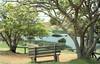 (anonimv) Tags: 35mm 35mmfilm 35mmfilmphotography ricoh colorfilm filmphotography filmcommunity analogo fotografiaanaloga analog analogico ishootfilm rapanui isladepascua easterisland ranoraraku