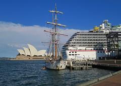 Sights of Sydney Harbour (Mondmann) Tags: sydneyharbour sydney nsw newsouthwales australia sydneyoperahouse operahouse architecture icon landmark ship boat cruiseship harbour harbor clouds sky mondmann canonpowershotg7x