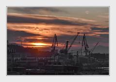 DSC_4193 (2) (Ferruccio Jochler) Tags: alba lavoro industria occupazione sviluppo