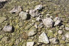 IMG_2899 (19ouch83) Tags: trapani sicilia sicily viaggi vacanza vacanze silvia giuseppe favignana