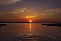 Yokohama Bay Bridge with the morning sun._RM25650 (nabe121) Tags: sony α7rmⅱ ilce7rm2 fe emount sonyalpha sigma 24mm70mm f28 dg os hsm art a017 samount silkypixdeveloperstudiopro8 mc11 cp+ cpplus cpplus2018 yokohama 横浜 横浜ベイブリッジ