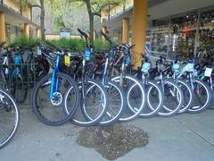 DSC01714 (classroomcamera) Tags: sidewalk sidewalks bike bicycle rack racks row rows parked park parks parking green blue wheel wheels outside outdoors