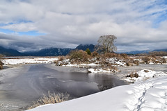 Grant Narrows Regional Park (SonjaPetersonPh♡tography) Tags: pittmeadows pittlake pittpoulder grantnarrowsregionalpark 2018 winter snow winterscene nature park regionalpark bc bcparks britishcolumbia canada nikon nikond5300 boating pittriver marina mountains landscape mountainlandscape forest wildlife clouds reflections waterreflections snowscape