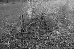 IMG_4339vb (hunted08) Tags: monochrome blackandwhite rustic barn country