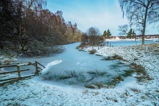 Frozen Avie Lochan