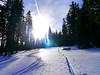 Zwoa Brettl, a gführiger Schnee, Juche !!! (rudi_valtiner) Tags: schnee snow winter bäume trees spuren tracks pfad path wechsel wechselgebirge alpen alps arabichl sonne sun sonnenstrahlen sunbeams sonnenlicht sunlight fichten firs spruces molzegg steyersbergerschwaig kirchbergwechsel niederösterreich loweraustria österreich austria autriche wanderung20180125 traces schwünge verves