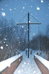 the bridge (Sofeha) Tags: snow canada snowstorm winterstorm storm winter snowing flash trees bridge path snowflake snowfalling