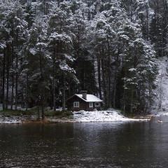 Lita hytte - - Small cottage (erlingsi) Tags: no hytte cottage austefjorden volda noreg trees trær skog wood sq winter snow