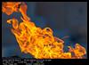 Fire flames (__Viledevil__) Tags: blazing burn danger dangerous detail energy fiery fire fireplace flame flammable heat hell hot ignite inferno motion orange red warm wild wildfire yellow cádiz andalucía españa es