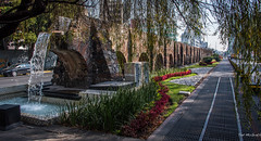 2018 - Mexico City - Chapultepec Aqueduct - 2 of 3 (Ted's photos - For Me & You) Tags: 2018 cdmx cityofmexico cropped mexico mexicocity nikon nikond750 nikonfx tedmcgrath tedsphotos tedsphotosmexico vignetting bollards aqueduct aqueducto chapultepecaqueduct acueductodechapultepec streetscene street arcos arches walkway sidewalk shadows water fountain red redrule grating