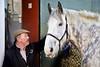 Shire Horse (Nexus Nine Photography) Tags: shirehorse parliamenthill