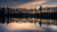 sunset in a unique play of colors (hjuengst) Tags: bavaria bayern sunset sonnenuntergang steinsee lake reflection reflektionen reflections tree