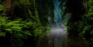 River of Raftsmen