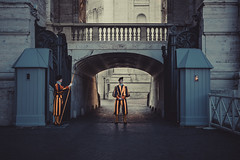Schweizergarden (A.Dissing) Tags: in case you was wondering how guards look st peters basilica schweizergarden black yellow young a7ii anders angle art amazing adventure awesome a7m2 a7 artistic angry access exposure enjoy explore end rome rom roma really city dissing dark day