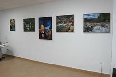 """Inauguración de la Exposición Colectiva de Artistas Plásticos Dominicanos • <a style=""""font-size:0.8em;"""" href=""""http://www.flickr.com/photos/136092263@N07/26059029338/"""" target=""""_blank"""">View on Flickr</a>"""