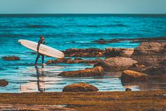 sunset cliffs (Lichtbildidealisten.) Tags: 2017 kalifornien usa sandiego surfer teal orange longboard oldschool cliffs water tealorange