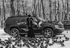 love of birds (Lyutik966) Tags: russia sergievposad street bird pigeon nature car people priest man snow winter